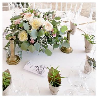 Centre de table cadeau invités plante gr