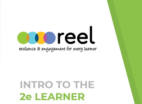 2/5 REEL Presents Intro to 2e to PAUSD Ed Specialists