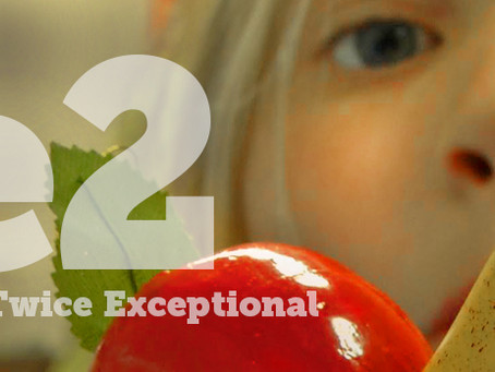 2e2: Teaching the Twice Exceptional Film Screening