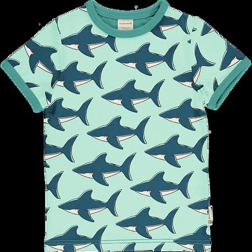 Top SS - SHARK - Maxomorra