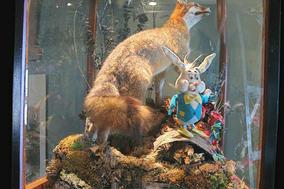fox and bunny.jpg