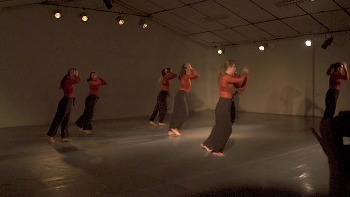 Obra de danza contemporánea que indaga en las experiencias reales de violencia de género y cuestiona el rol de la mujer en sociedad en los cuerpos de ocho intérpretes-autoras, del Colectivo Herederas.
