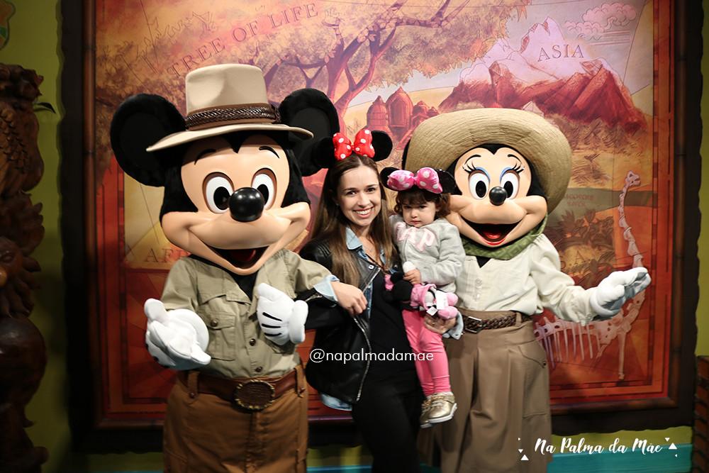 Roteiro Disney Parque Animal Kingdom