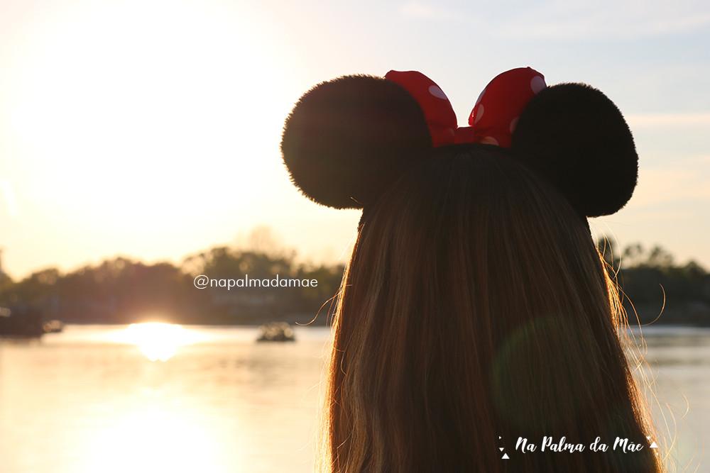 Roteiro Disney 6 Dias