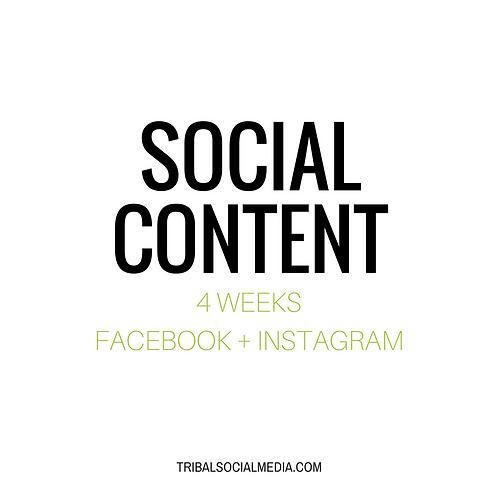 4 Week Content Schedule