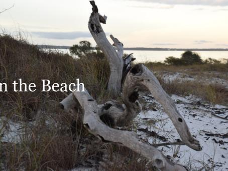 Reclining Nude on the Beach