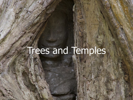 Trees and Temples