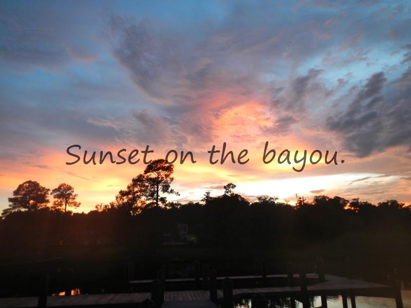 Pensacola Bayou Photos Nature, Thoughts