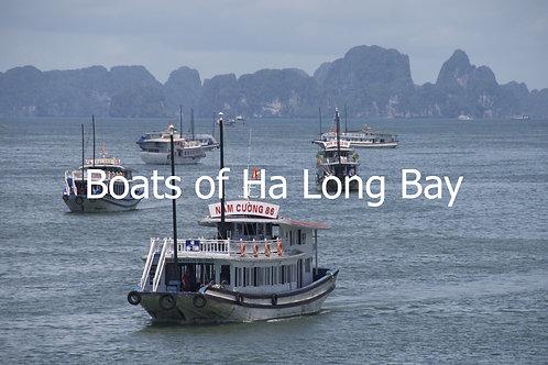 Boats of Ha Long Bay111