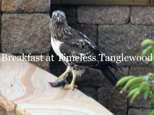 Breakfast at Timeles Tanglewood