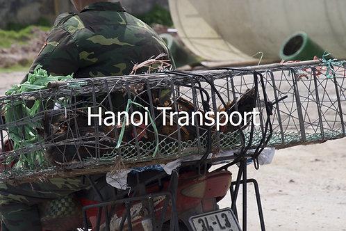 Hanoi Transport 11