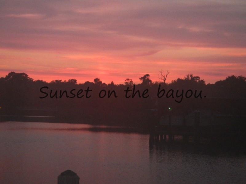 Pensacola Bayou Photos Natureoughts