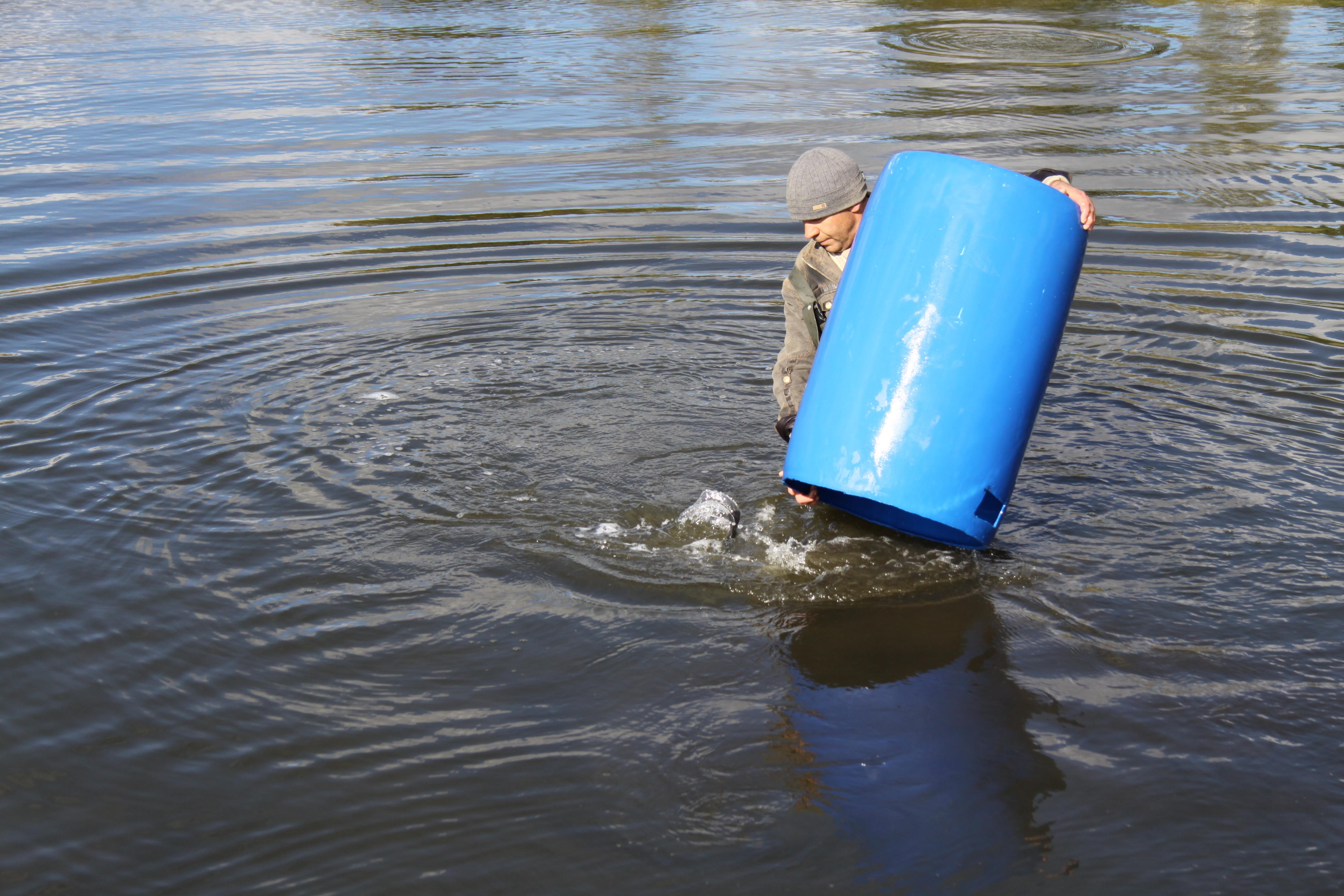 Рыбалка клевые савки