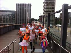Wellness Walk, Sydney 2013