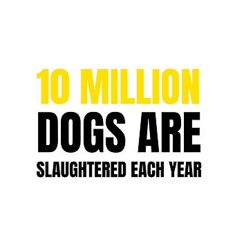 Our-Causes-DogMeatTrade-min.png