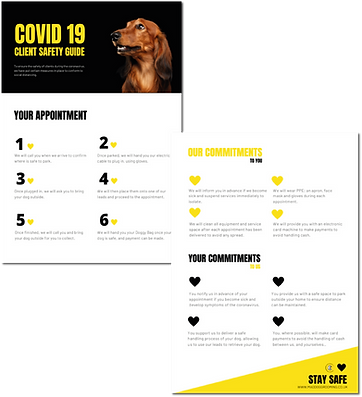 Covid 19 Guide Image.png