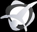 """logo firmy przedstawiaakrobatę robiącego """" gwiazdę"""""""
