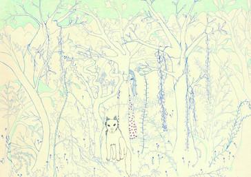 Forest ( De la serie Dreams)