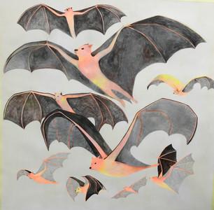 Flying foxes  (De la serie Extrange animals)