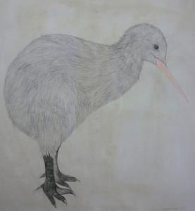 Kiwi  (De la serie Extrange animals)