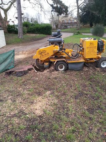 Stump Removal KW Boulton