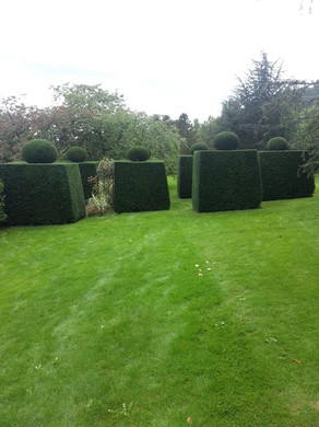 Hedge Trimming Malvern