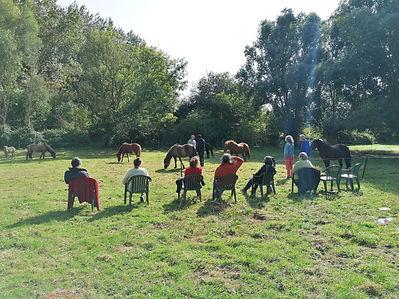 opstellignen tussen de paarden 3.jpg