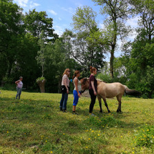 1905_Workshop tussen de paarden_mei 2019