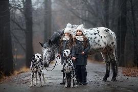 twins-girls-portrait-appaloosa-horse-dal