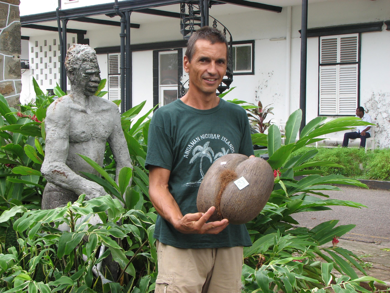 Pralins - coco fesse