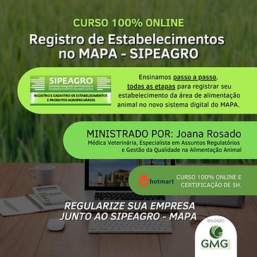 CURSO REGISTRO JOANA 2020 (1).png