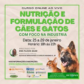 Cópia de Cópia de CURSO FLAVIA JANEIRO O