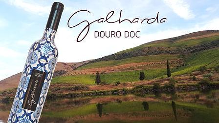Vinhos GALHARDA