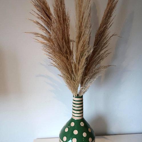 Mini Pampas Grass