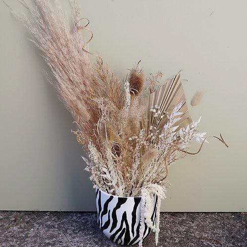 Nude Zebra Dried Arrangement