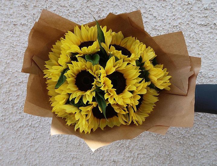 Fresh Sunflower Stems