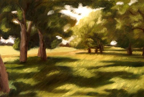 The Oak Grove