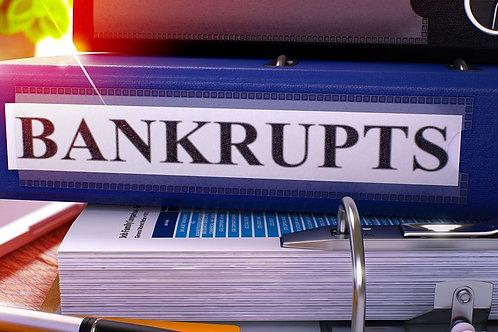 Bankruptcy Record Check