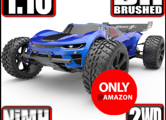 Piranha 1/10 Scale Electric Truggy