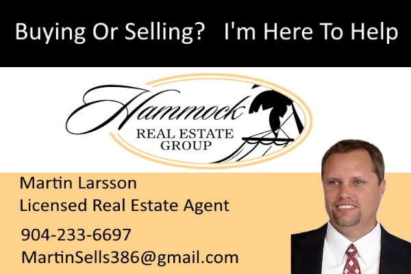 Martin Larsson Real Estate Agent