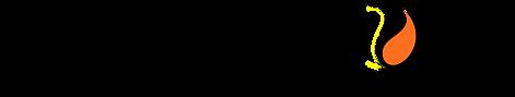 PrecisionDen-TEXT LOGO.png
