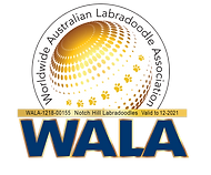 Notch Hill WALA logo 21.png