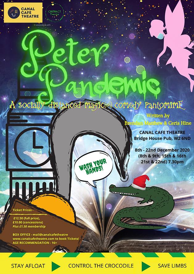 Peter Pandemic image.png