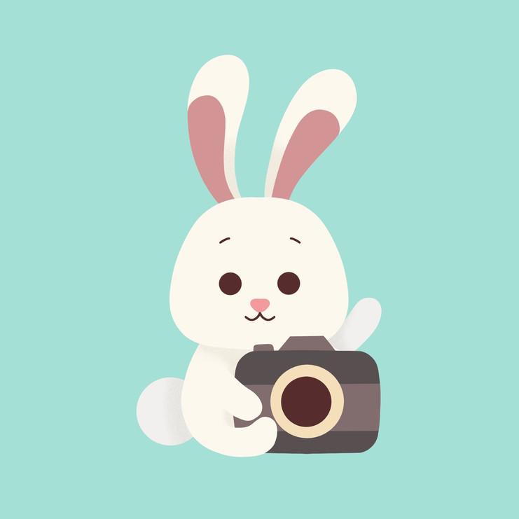 Rabbit Camera