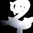 d2l_shine_logo.png