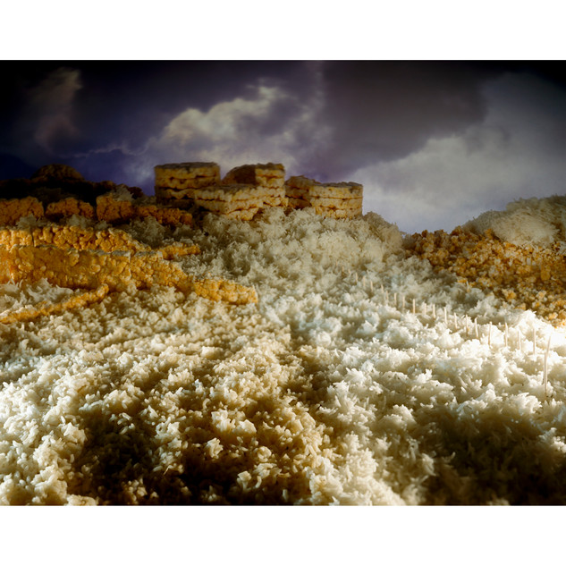 Lotosland