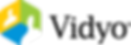 Vidyo-Logo-Color-Horiz.png