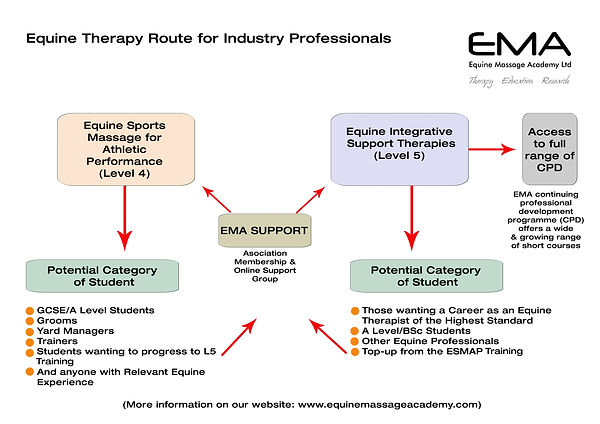 EMA THERAPY FLOW 2019.jpg