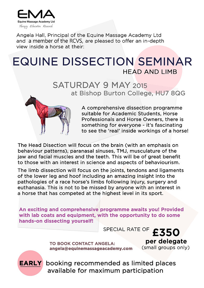horse massage training courses, dissection seminar.