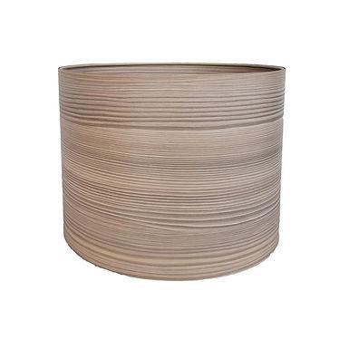Namib Oak